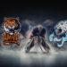 amur-barys-4-yanvarya-2021-video-obzor-matcha